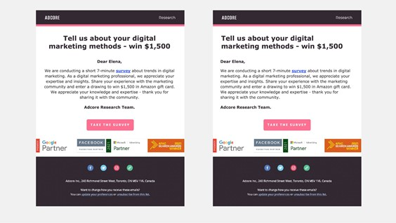 Which newsletter looks more professional